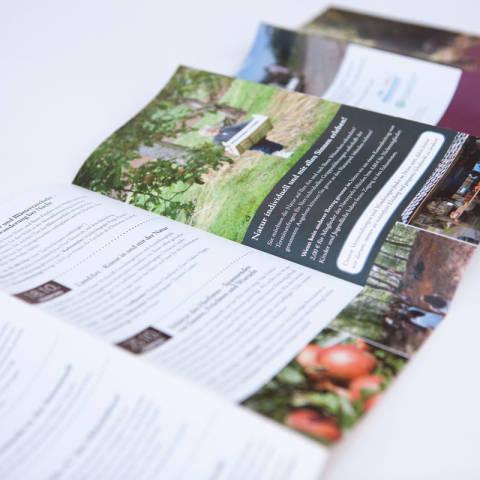 NP-EHW-Veranstaltungskalender3-1200×800 Titel